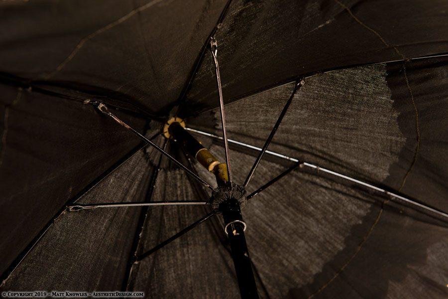 1860-black-cotton-parasol-04