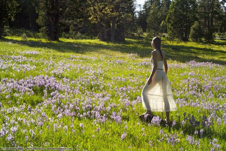 1910-white-lawn-petticoat-24