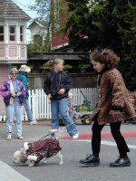 Ferndale Pet Parade