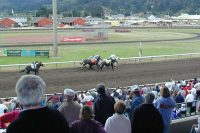 Horse Racing in Ferndale