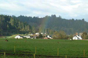 Ferndale Rainbow