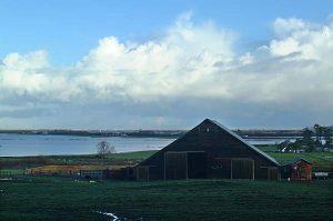 Flooded Ferndale