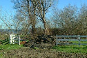 Big Pile of Mud