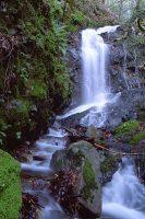 Uvas Park Waterfall