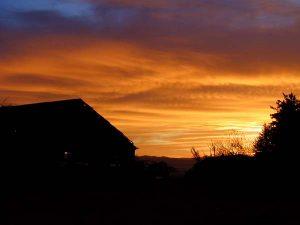 Ferndale Sunrise