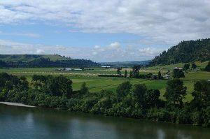 Eel Valley View