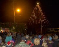 Ferndale Christmas Tree
