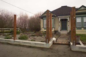 Flood damaged herb garden