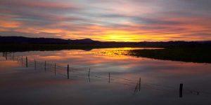 Waddington Sunrise