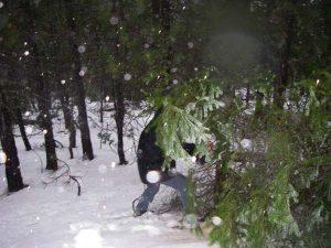 Matt chopping a tree