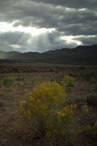 God's Rays