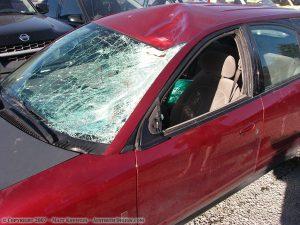 Car hit by deer