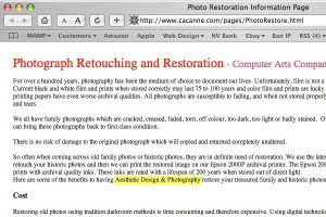 Plagiarized text