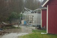 Destroyed Harbor Freight Greenhouse